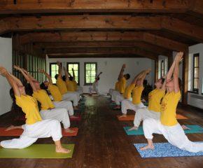 yoga14